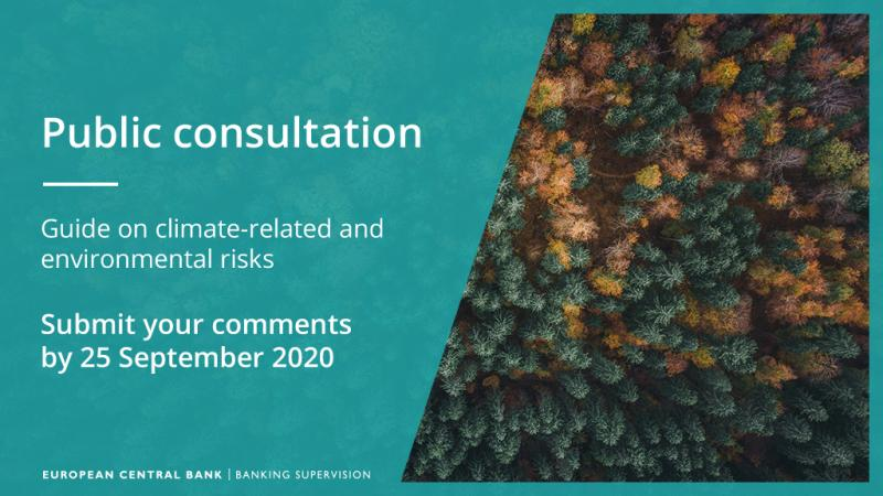 FEBEA ANSWERS TO CONSULTATION ON THE ECB DRAFT GUIDE ON CLIMATE RELATED AND ENVIRONMENTAL RISKS
