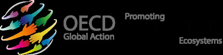 OECD – Peer Learning Partnership on social impact assessment and SDGs